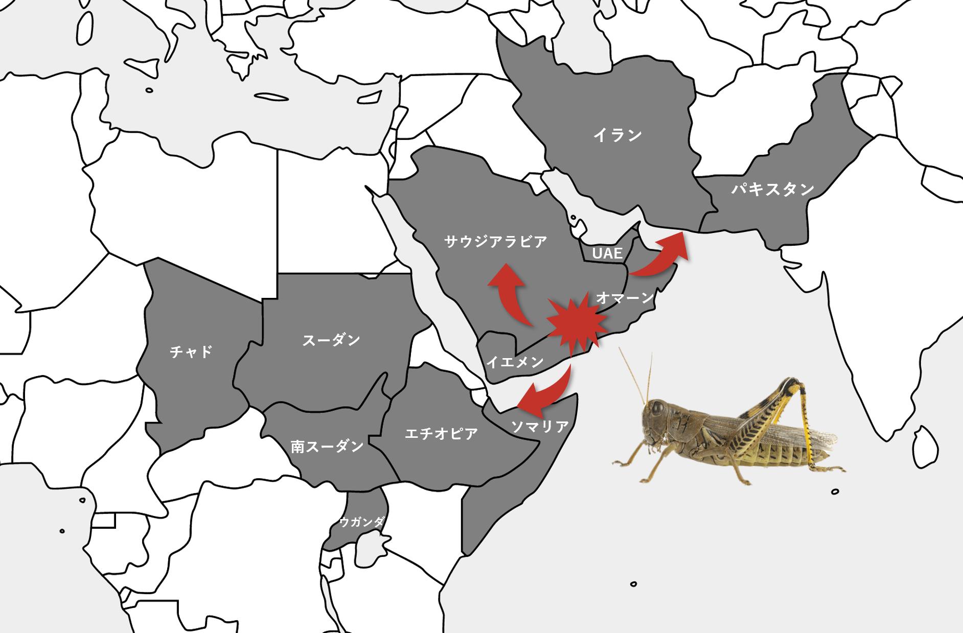 発生 地図 大量 バッタ 2020 コロナに続くもう一つの危機――アフリカからのバッタ巨大群襲来(六辻彰二)